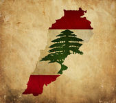 Vintage map of Lebanon on grunge paper — Stock Photo