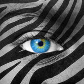 Blue eye with zebra texture — Stock Photo