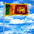 Stock Photo: Sri Lankwaving flag against blue sky