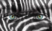 Human face with Zebra pattern - Save endangered species concept — Stock Photo