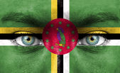Human face painted with flag of Dominica — Stock Photo