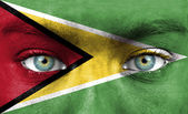 Human face painted with flag of Guyana — Stock Photo