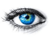 Blue woman eye macro shot — Stockfoto