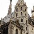 St. Stephan cathedral in Vienna Austria — Stock Photo