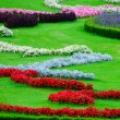 Beautiful flower garden in Schonbrunn palace - Vienna Austria — Stock Photo