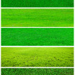 Stock Photo: Grass collage