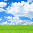 Beautiful green field and blue sky - natural landscape view — Stock Photo #11942945