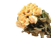 Withered rose bouquet — Stock Photo