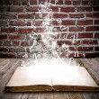 Stock Photo: Open book with letters falling into pages