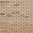 ストック写真: Brick wall background
