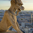 Royalty-Free Stock Photo: Notre Dame Gargoyle Statue