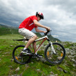Stock Photo: A man riding a mountain bike