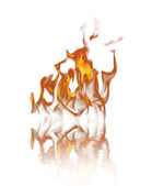 Fire over white background — Stock Photo