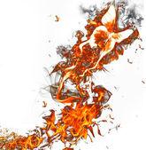 Oheň motýl na bílém pozadí — Stock fotografie