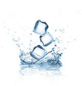 Ice cubes splashing into water over white — Stockfoto