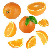 Fresh orange collection over white background — Stock Photo