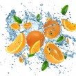 Fresh citrusses in water splash - Stock Photo