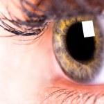 Beautiful Eye of Woman — Stock Photo