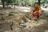 Monk and the Tiger — Stock Photo