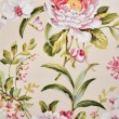 Floral fabric — Stock Photo #11408148