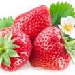 Appetizing strawberry. — Stock Photo