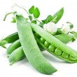 Pods of green peas with leaves — Stock Photo