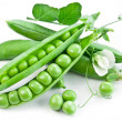 Pods of green peas with leaves — Stock Photo #11568987