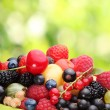 Variety of berries — Stock Photo