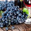 Grapes — Stock Photo #11956596