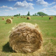 Haystacks on the field - Stock Photo