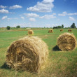 Stock Photo: Haystacks on field