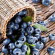Stock Photo: Blueberries have dropped from basket