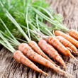Carrots with leaves - Stock Photo