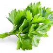 Bunch of green coriander — Stock Photo
