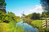Typical dutch windmill — Stock Photo