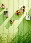 Spring wooden wall — Stock Photo