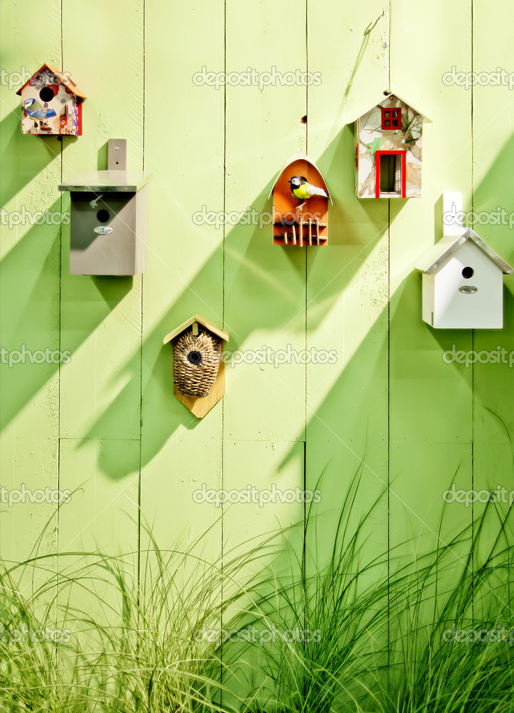 Background from birds bos by spring wooden wall — Stock Photo #11574642