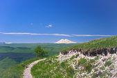 Old extinct volcano Elbrus and green valley — Stock Photo