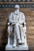Charles Darwin Statue — Stock Photo