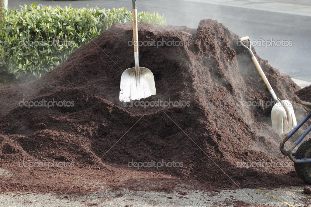 In a driveway freshly delivered hemlock barkdust is seen with two shovels and part of a wheelbarrow waiting to be distributed  around the landscaping of a residential property. — Stock Photo #11350776