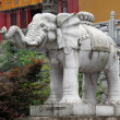 Big elephant — Stockfoto #10802507