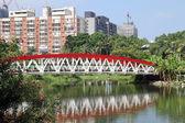 New bridge — Stock Photo