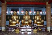 Zlatých buddhů — Stock fotografie