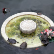 Stock Photo: Fountain wiith turtles