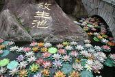 Bridge, rock and lotuses — Stock Photo