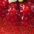 Background summer strawberry farm - 