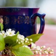 Royalty-Free Stock Photo: Cup of hot tea with spring blossom