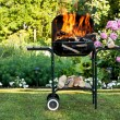 Flames in a barbecue - Stock Photo