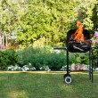 Flames in a barbecue — Stock Photo #12090573