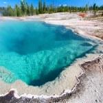 Black Pool Yellowstone National Park — Stock Photo #10908057